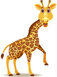 Funny giraffe cartoon Royalty Free Stock Images