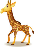 Funny giraffe cartoon Stock Photography