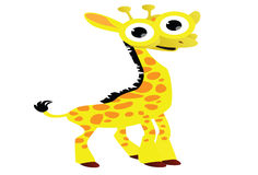 Funny giraffe cartoon Royalty Free Stock Image