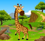 Funny giraffe cartoon in the jungle with landscape background Stock Image