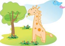 Funny giraffe Stock Photo