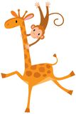 Funny giraffe with monkey Stock Photography