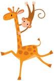 Funny giraffe with monkey Stock Photography