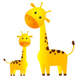 Funny giraffes Stock Images