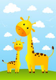 Funny giraffes Stock Photos