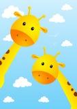 Funny giraffes Royalty Free Stock Photo