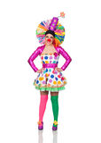 Funny girl clown with a big colorful wig Stock Photos