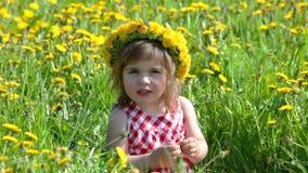 Funny girl on dandelion field in sunny day stock video