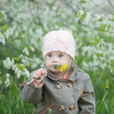 Funny girl with Down  syndrome in the mouth pulls dandelions. Funny girl with Down syndrome in the mouth pulls dandelions Stock Photo