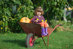 Funny girl with pumpkins in the garden Stock Images