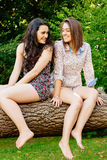Funny girls sitting on a trunk Royalty Free Stock Photo