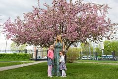 Funny girls walking on the lawn with her mother. Sisters play together with mom. maternal care. happy family royalty free stock photo