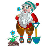 Funny gnome holding blue flower in his hand. Stock Images