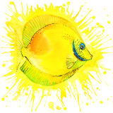 Funny gold fish with watercolor splash textured. Background. fashion print vector illustration