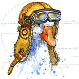 Funny goose aviator hat watercolor. fashion print Stock Images