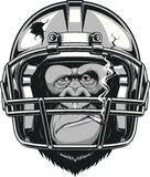 Funny gorilla. Vector illustration, funny gorilla American football player wearing a helmet and smoking a cigarette Royalty Free Stock Image