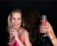 Funny Gossip Royalty Free Stock Photo