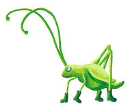 Funny grasshopper Stock Photography