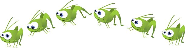 Funny Grasshopper Jumping Stock Photo