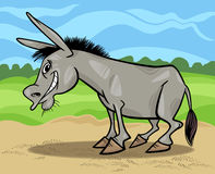 Funny gray donkey cartoon illustration Royalty Free Stock Image