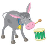 Funny gray drumming donkey Royalty Free Stock Photography
