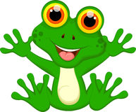 Funny Green frog cartoon Royalty Free Stock Images