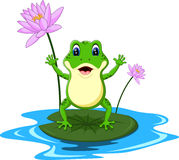Funny Green frog cartoon Royalty Free Stock Photo