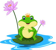 Funny Green frog cartoon Stock Images