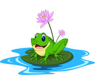 Funny Green frog cartoon Royalty Free Stock Photos