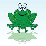 Funny green frog vector illustration Royalty Free Stock Images