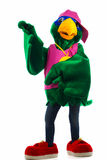 Funny green parrot Stock Photos
