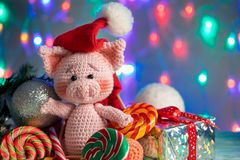 Funny greeting card with new year 2019. Pink pig with lollipops closeup on background with illumination.  royalty free stock image