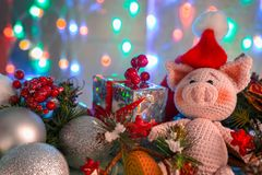 Funny greeting card with new year 2019. Pink pig with xmas balls, gift and cone on background with illumination stock photos
