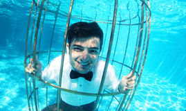 Funny groom underwater in a bird cage Stock Image