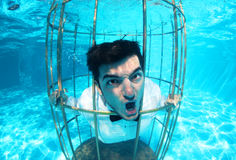 Funny groom underwater in a bird cage Stock Photo