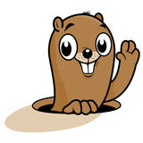 Groundhog cartoon Royalty Free Stock Image