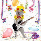 Funny guitar cat. Cat with guitar in middle of confetti and streamer Royalty Free Stock Images
