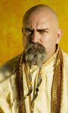 Funny Guru Stock Photos