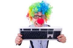Funny guy with clown wig Royalty Free Stock Image