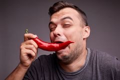 Funny guy eating red chili pepper on a gray background. Handsome man with spicy, hot pepper. Spiciness concept. Royalty Free Stock Images