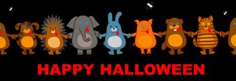 Funny halloween animals Royalty Free Stock Image