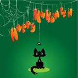 Funny Halloween Cat and Spider Royalty Free Stock Image