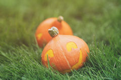 Funny halloween pumkins on grass Royalty Free Stock Photo