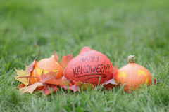 Funny halloween pumkins on grass Royalty Free Stock Photos