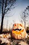 Funny halloween pumpkin in the forest Royalty Free Stock Photo