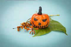 Funny Halloween pumpkin on green leaf Royalty Free Stock Image