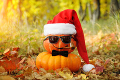 Funny Halloween. Pumpkin in sunglasses in the forest. Stock Image