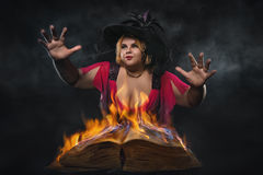 Funny halloween witch royalty free stock images