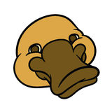 Funny happy cartoon platypus or duckbill Stock Photo