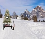 Funny happy and smiling christmas tree sliding down the ski hill slope on a sledge on a winter mountain landscape royalty free stock photography